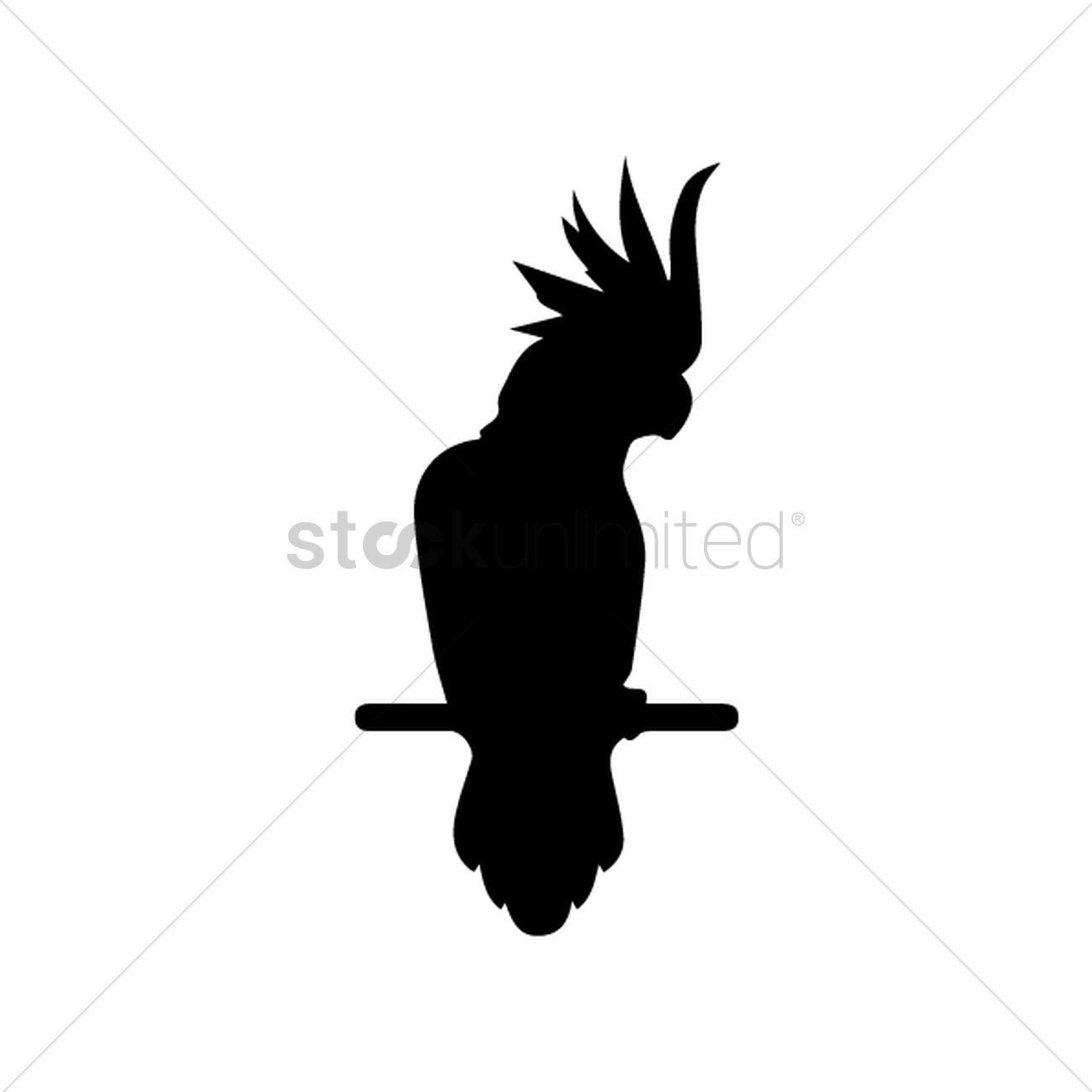 1300x1300 White Cockatoo Vector Image