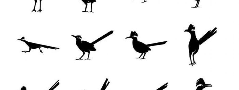 1003x380 Free Icons Roadrunner Bird Silhoutte Vector Pack Runner