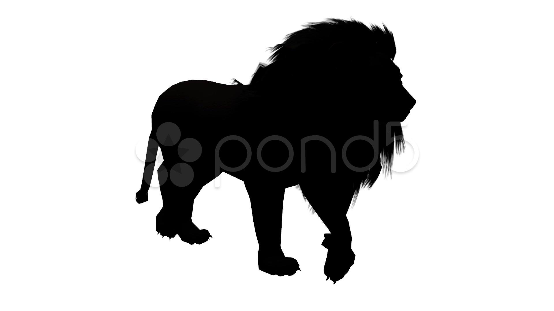 1920x1080 Lion Fast Walk,endangered Wild Animal Wildlife Walking Sketch