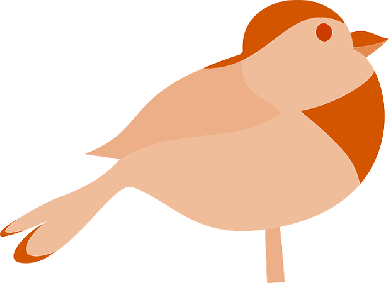 Robin Bird Silhouette