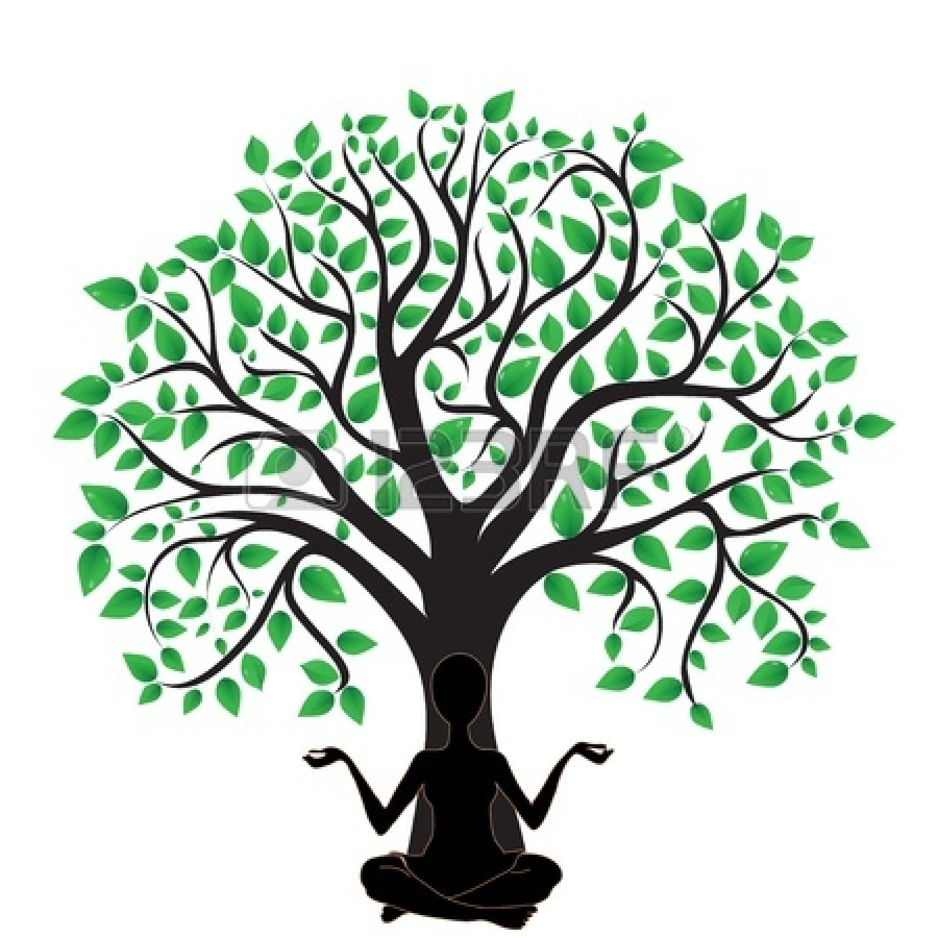 1350x1350 Oak Tree With Roots Clipart