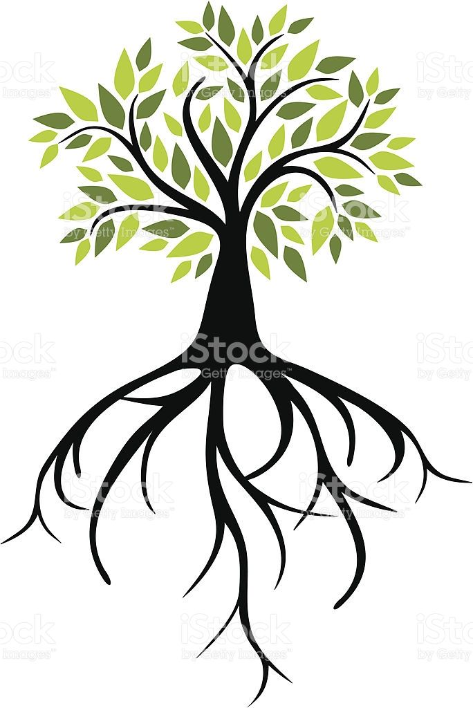 684x1024 176 Best Tree Logos Images On Tree Logos, Plant And Trees