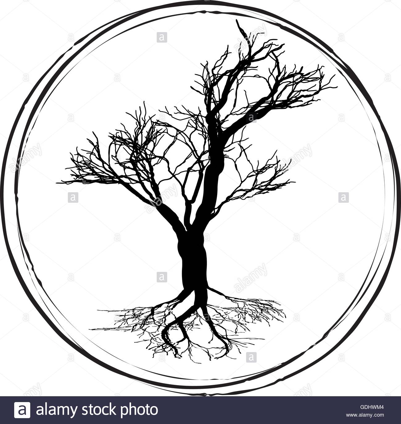 1300x1374 Blacknd White Drawing Of Deciduous Tree. Black Silhouette On