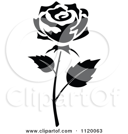 450x470 Black Rose Clip Art