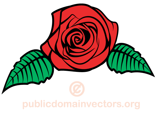 600x440 Rose Flower Vector Image Download Free Vector Art Free Vectors