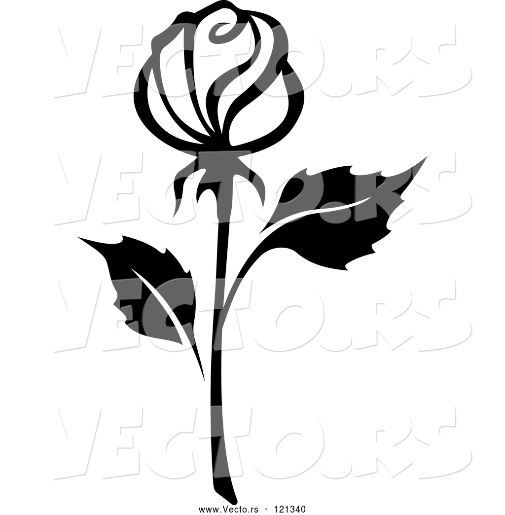 1024x1044 Vector Of Black And White Rose Flower 15 By Vector Tradition Sm