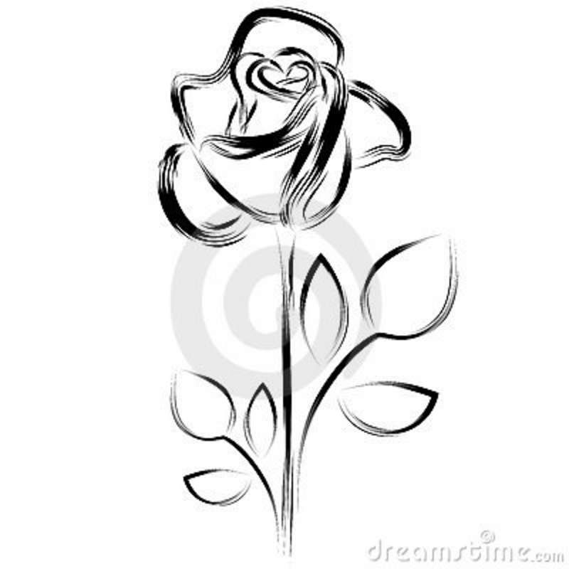800x800 White Rose Clip Art Free Silhouette Of A Rose Royalty Free Stock