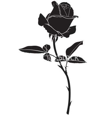 380x400 Roses Silhouette Vector Tattoo Ideas Silhouettes