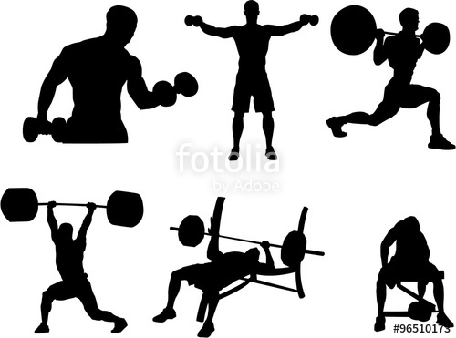 500x371 Set Of Bodybuilding Silhouette Stock Image And Royalty Free