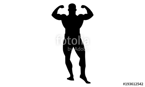 500x300 Male Bodybuilding Silhouette Image Looks From The Front Stock