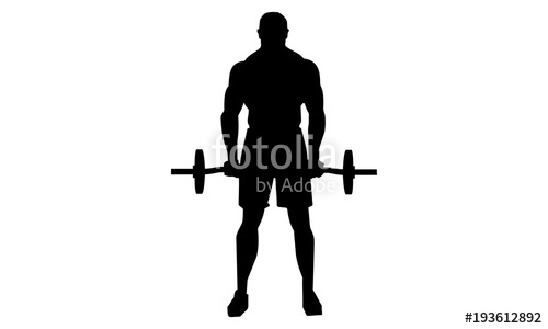 500x300 Vector Image Of Bodybuilding Silhouette Is Lifting