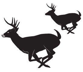 275x238 Image Result For Running Buck Deer Silhouette Deer