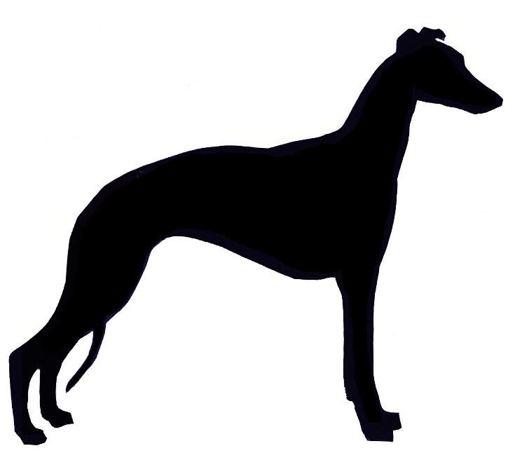 735x676 Greyhound Clipart Whippet