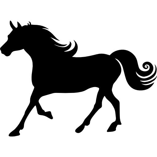 512x512 Horse Silhouette, Animals, Horse, Running, Run, Running Horse Icon