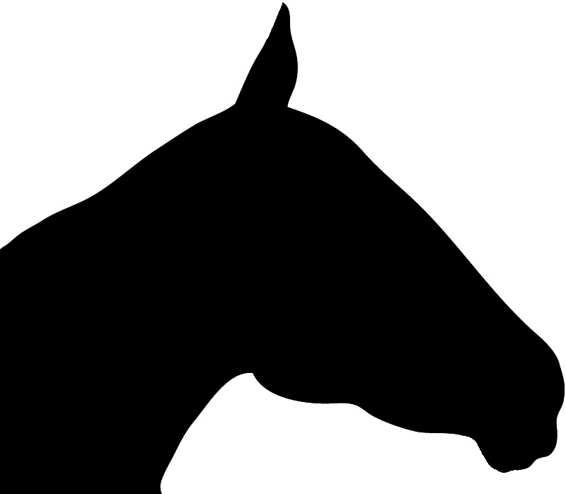 800x698 Horse Silhouette