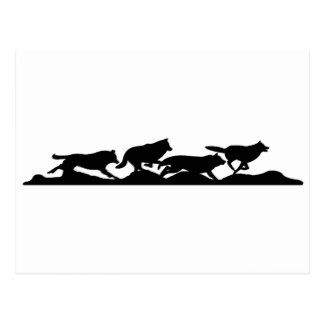 324x324 Running With Wolves Postcard Sign Wolf