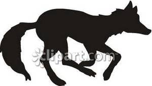 300x171 Of A Wolf Running