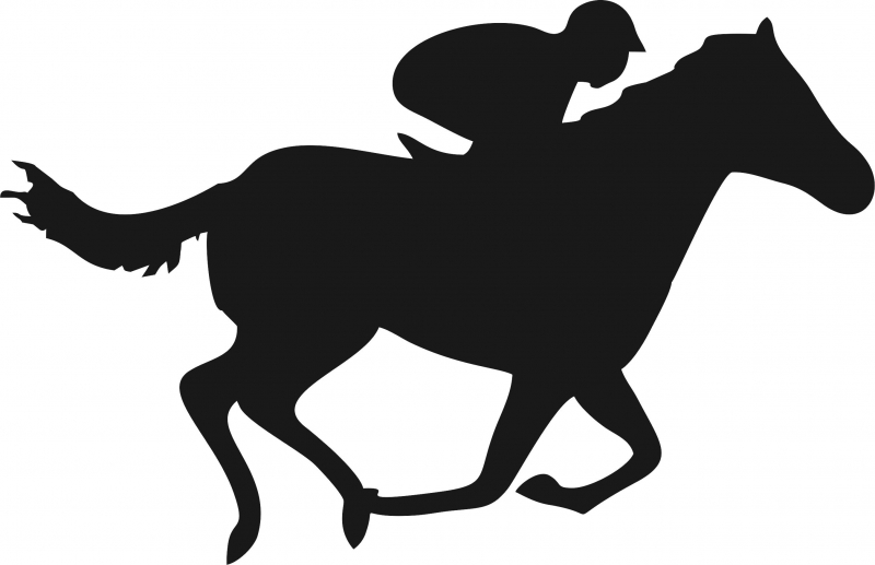 800x517 Horse With Jockey Silhouettes Laser Cut Appliques