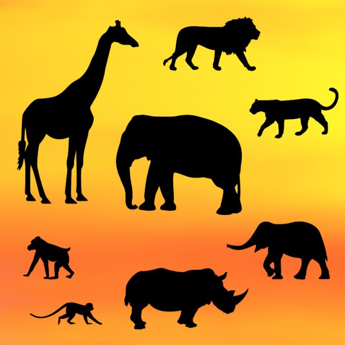 700x700 Safari Silhouette Set