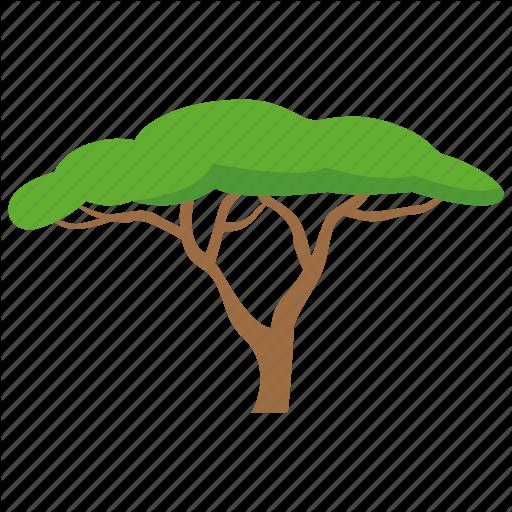 512x512 Acacia, Africa, Plain, Plains, Safari, Savannah Tree, Tree Icon