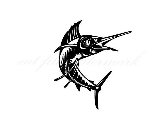 570x415 Sailfish Cut Files Svg Amp Studio 3 File For Silhouette Brother