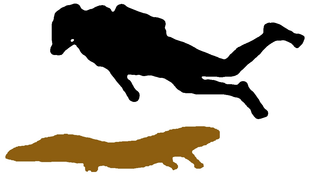1041x612 Trinity Alps Giant Salamander Cryptid Wiki Fandom Powered By Wikia