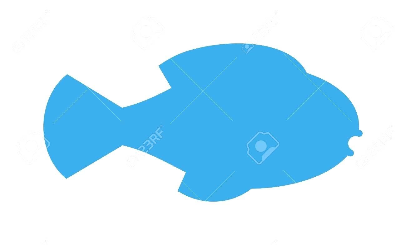 1300x785 Template Salmon Template Fish Silhouette Seafood Shop Logo