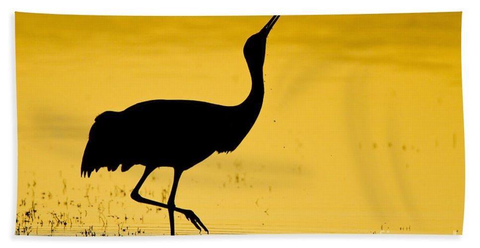 967x500 Sandhill Crane Silhouette Beach Sheet For Sale By Bryan Keil