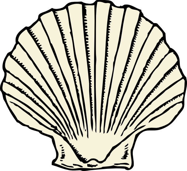 600x549 Scallop Shell Clip Art