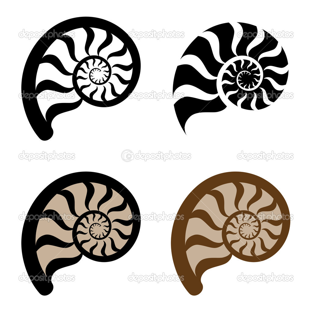1024x1024 Best Photos Of Sea Shell Silhouette