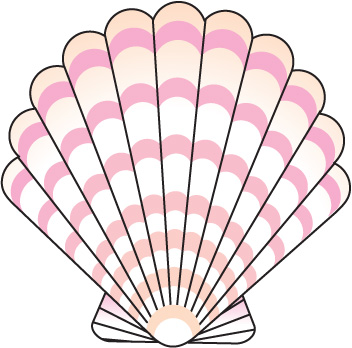 352x348 Clams Clipart Seashell