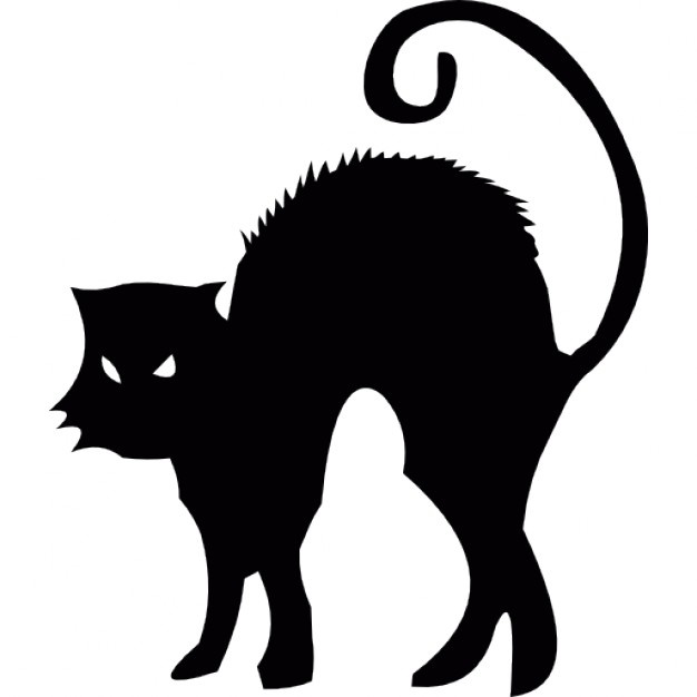 626x626 Scared Cat Vectors, Photos And Psd Files Free Download