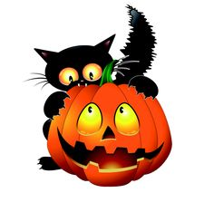 236x234 Cartoon Gato Negro Con El Material De Calabazas Vector Gatos
