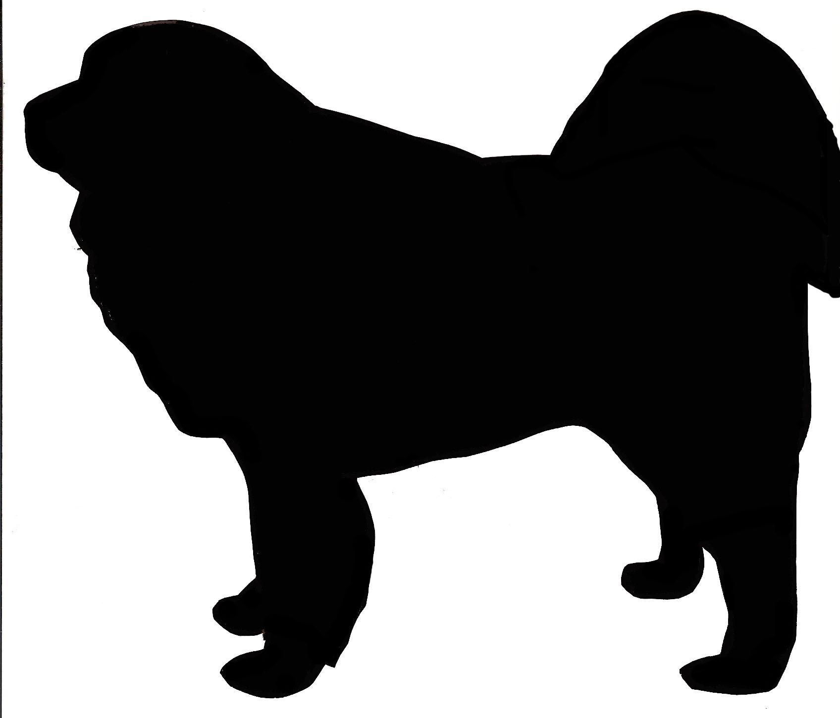 1696x1450 Scottish Terrier