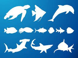 260x194 Image Result For Sea Creatures Silhouette Animal Silhouettes