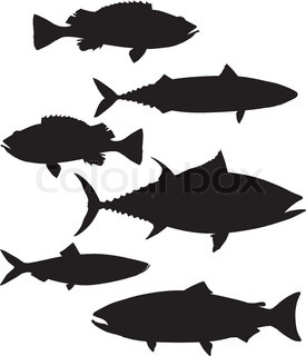 275x320 A Hundred Silhouettes Of Fish And Sea Animals Stock Vector