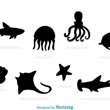 360x360 Sea Life Archives My Graphic Hunt