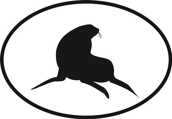 550x379 Sea Lion Oval Euro Bumper Sticker Oval Envy
