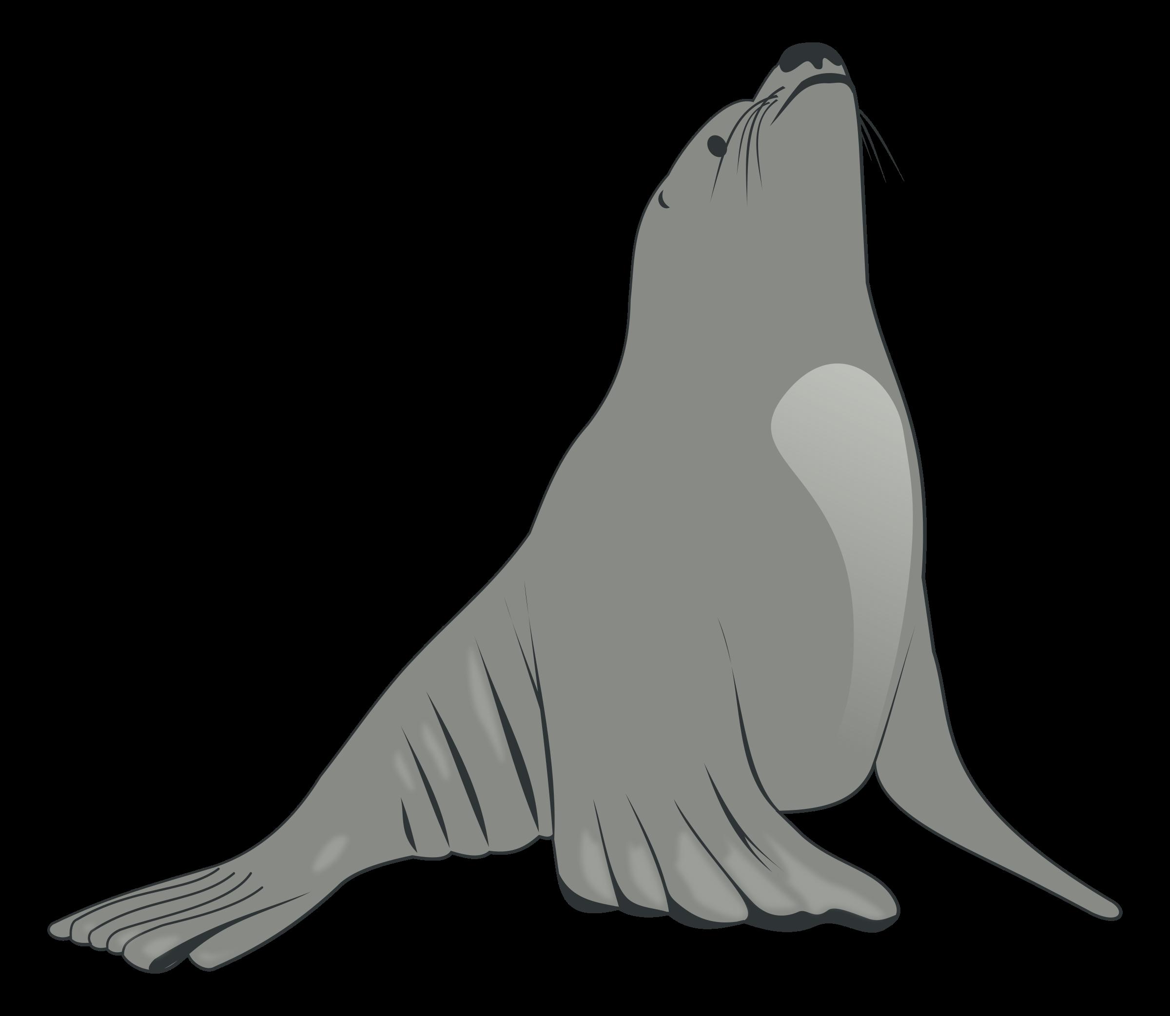 2400x2085 Sea Lion Clip Art Clipart Panda