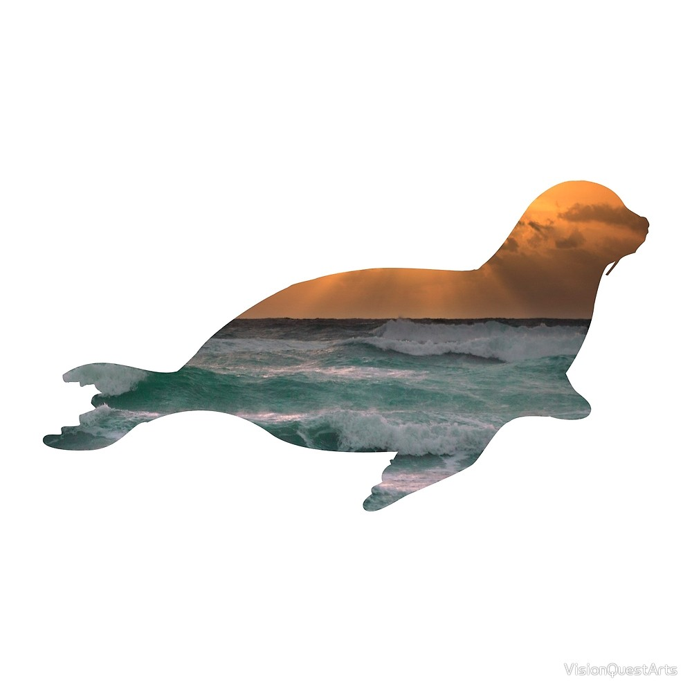 1000x1000 Seal Sea Lion Amp Sunset Ocean Waves Silhouette By Visionquestarts