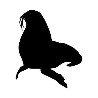 339x340 Free Silhouettes Sea Lion