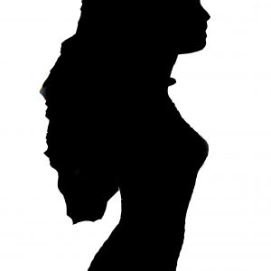 Sea Shell Silhouette