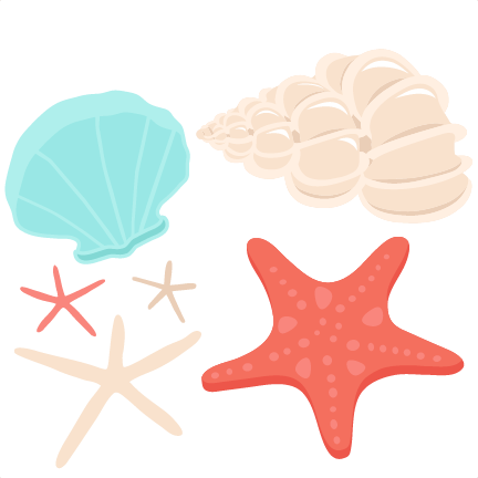 432x432 Seashell Set Svg Scrapbook Cut File Cute Clipart Files