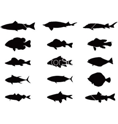 380x400 Silhouette Of Sea And River Fish Vector Silhouette Clip Art