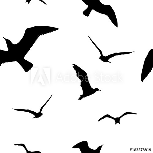 500x500 Silhouettes Seagulls. Vector Black Pattern Wall Decor