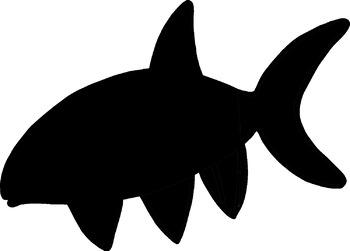 350x251 Fish Clip Art Color Black Line And Silhouettes Semi Realistic Tpt