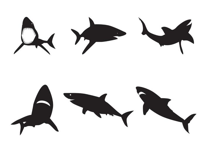 700x490 Vector Shark Silhouettes