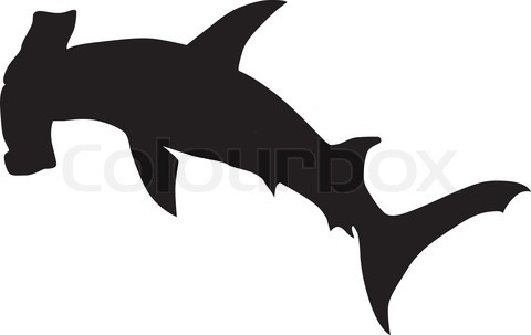 480x303 Hammerhead Shark Clipart Printable