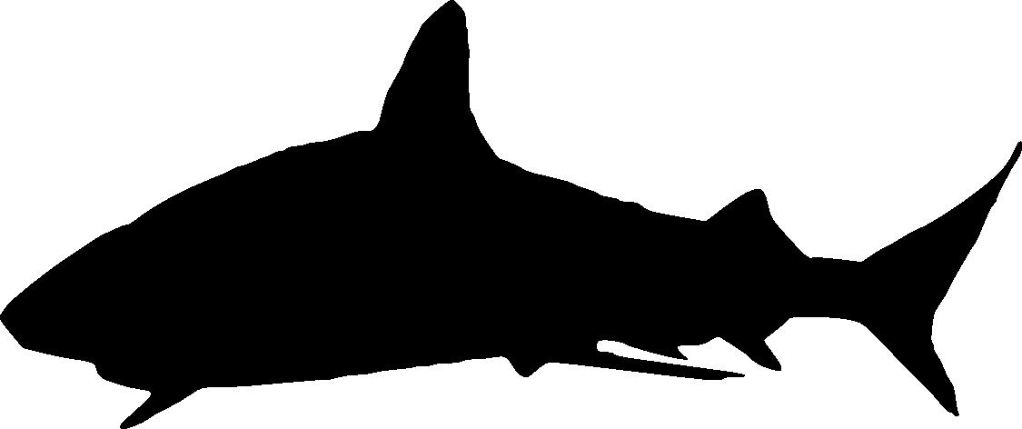 1125x472 6 Shark Silhouette (Png Transparent)