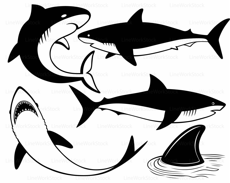 1500x1193 Shark Svgshark Clipartshark Svgshark Silhouetteshark Cricut
